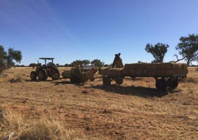 Farm Namibia