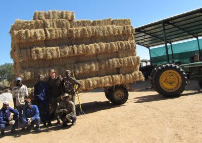 jagdfarm-namibia-waterberg10