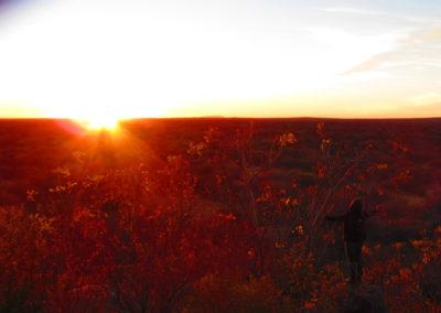 jagdfarm-namibia-waterberg2