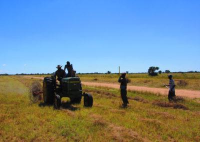 jagdfarm-namibia-waterberg20