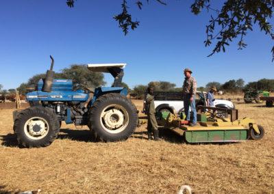 jagdfarm-namibia-waterberg21