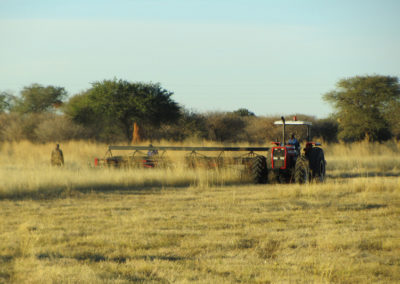 jagdfarm-namibia-waterberg22