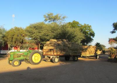 jagdfarm-namibia-waterberg24