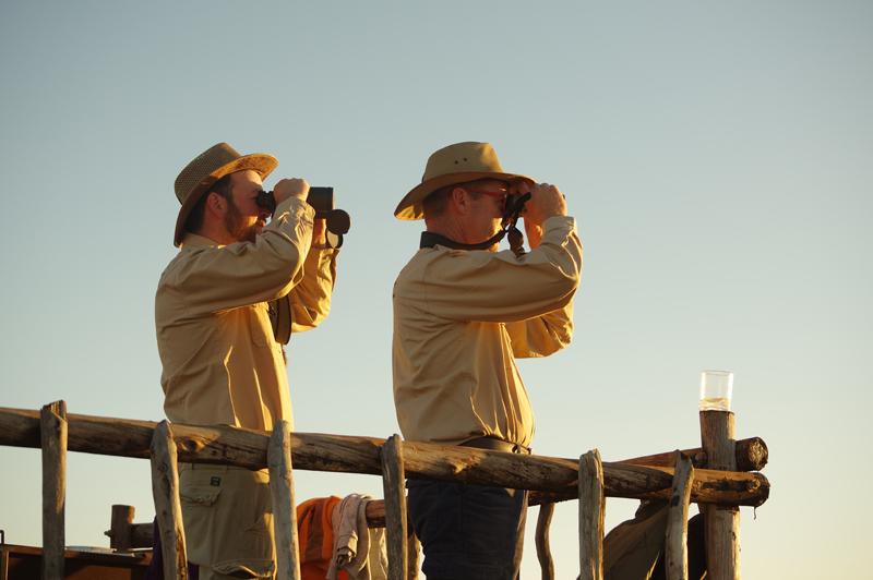 Genießen sie tolle Aussichten von Landschaften und Tieren.